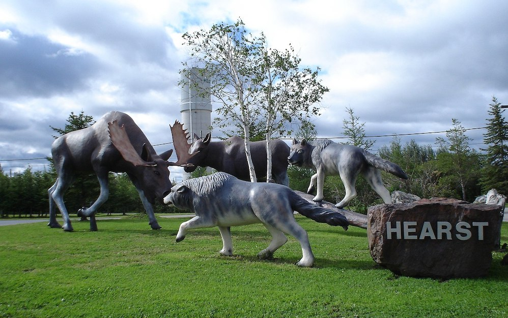 statues of wolves and moose