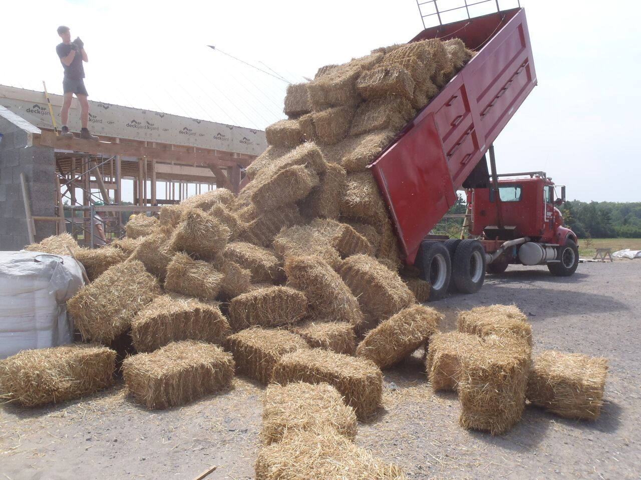 straw bales being unloaded from a truck