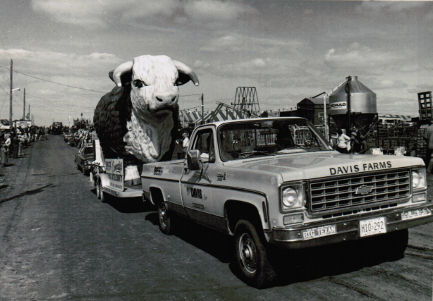 black and white photo of a fibreglass bull on a tractor