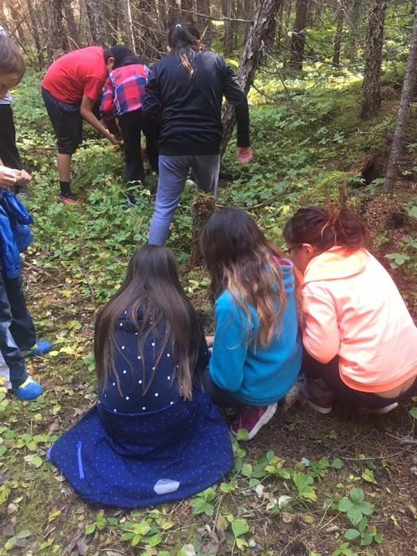 students crouch on the forest floor