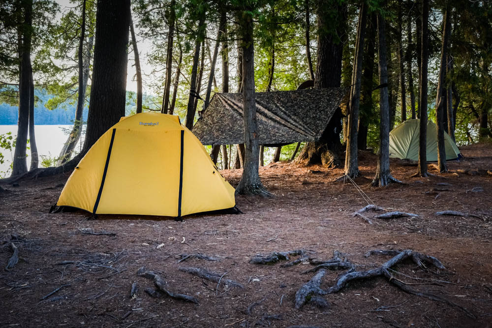 a yellow tent in the woods
