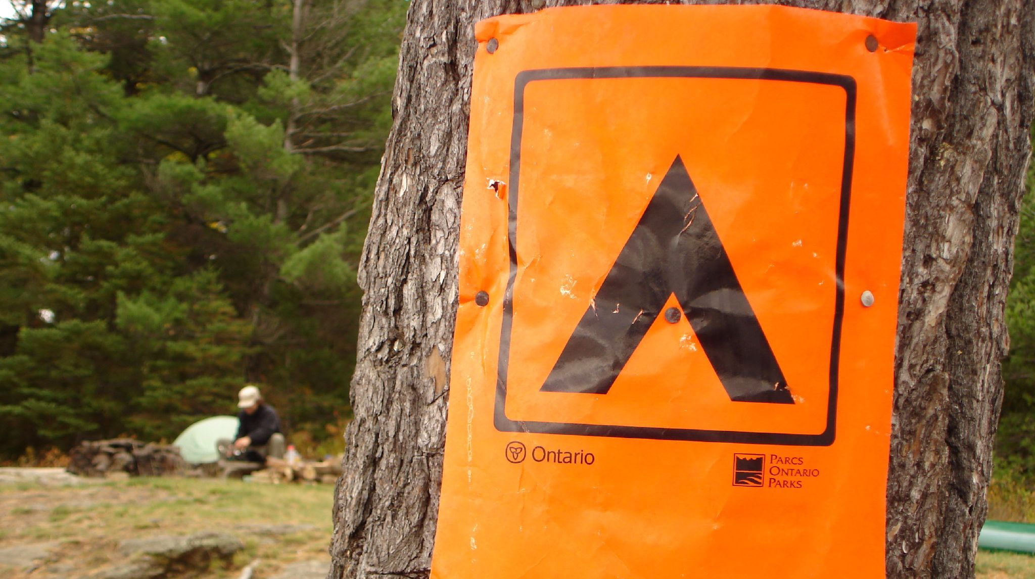 orange poster on a tree, with a campsite in the background