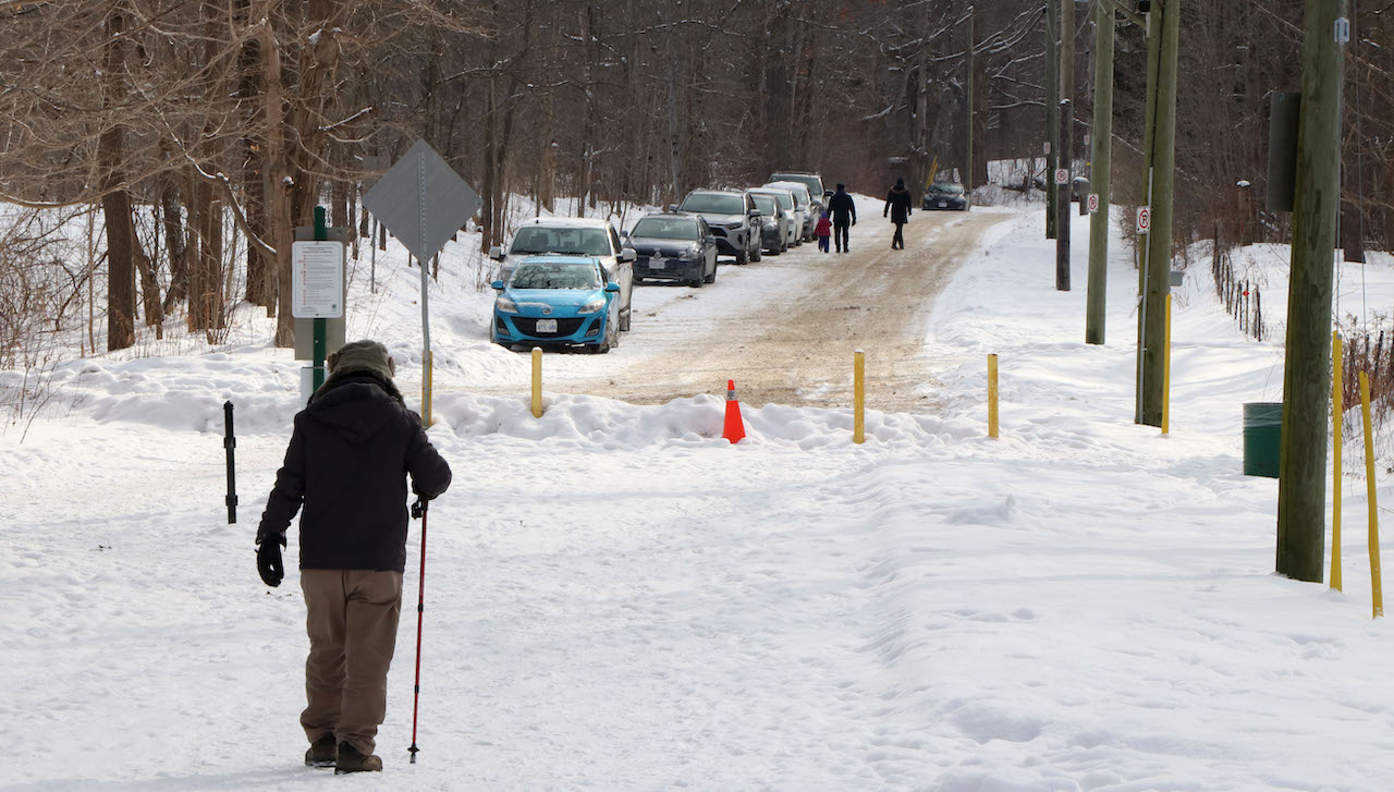 a person with a walking stick at the entrance to a snowy trail