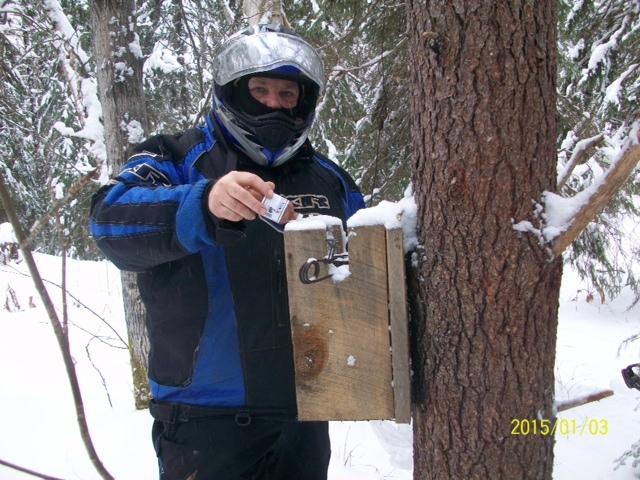 a man checks a trap on a tree