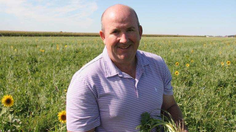 smiling man in field with sunflowers