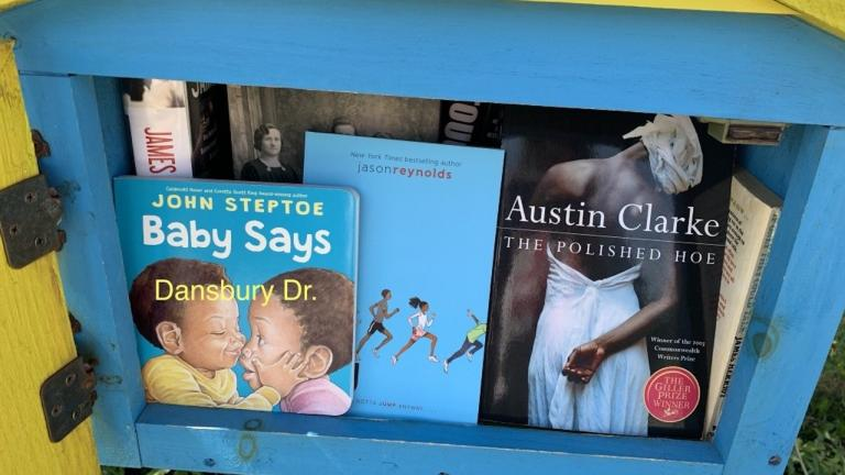 a number of books in a little blue box from the article How grassroots efforts are creating more diverse libraries