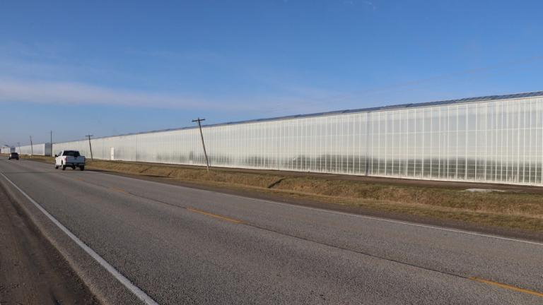a stretch of highway by a greenhouse from the article Has Ontario changed its approach to migrant-worker housing?