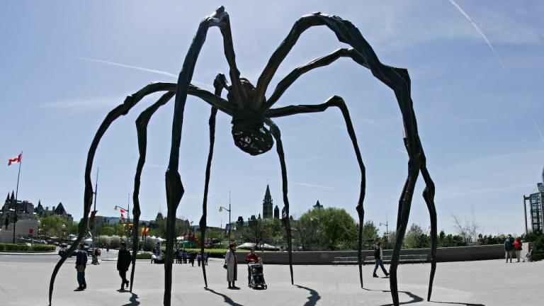 a giant black spider sculpture from the article Roadside-attraction showdown: Ottawa's giant spider