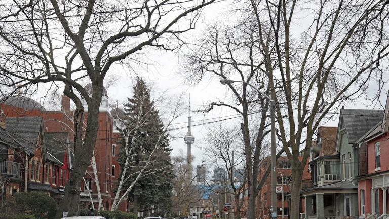 houses and trees with the CN Tower in the background