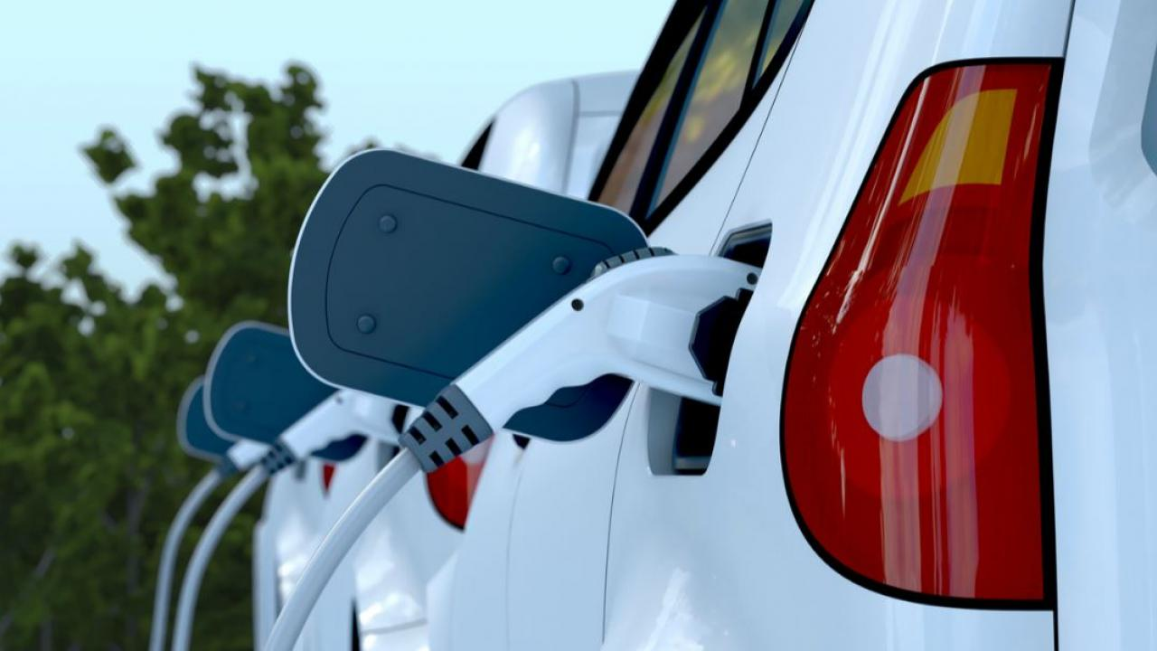 electric cars lined up to be charged