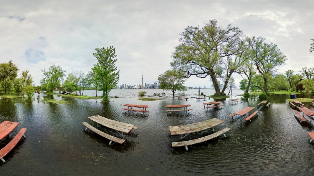 a flooded park on Toronto island