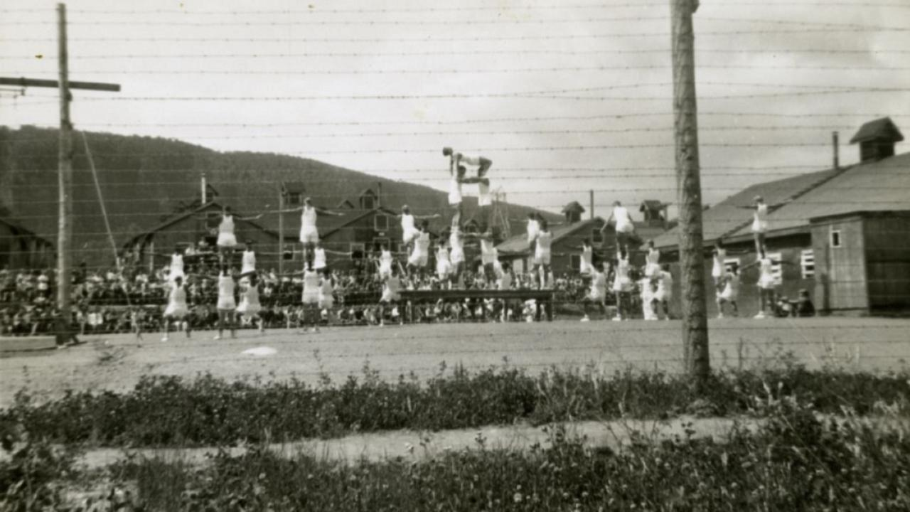 archival of POW camp in Ontario during WWII