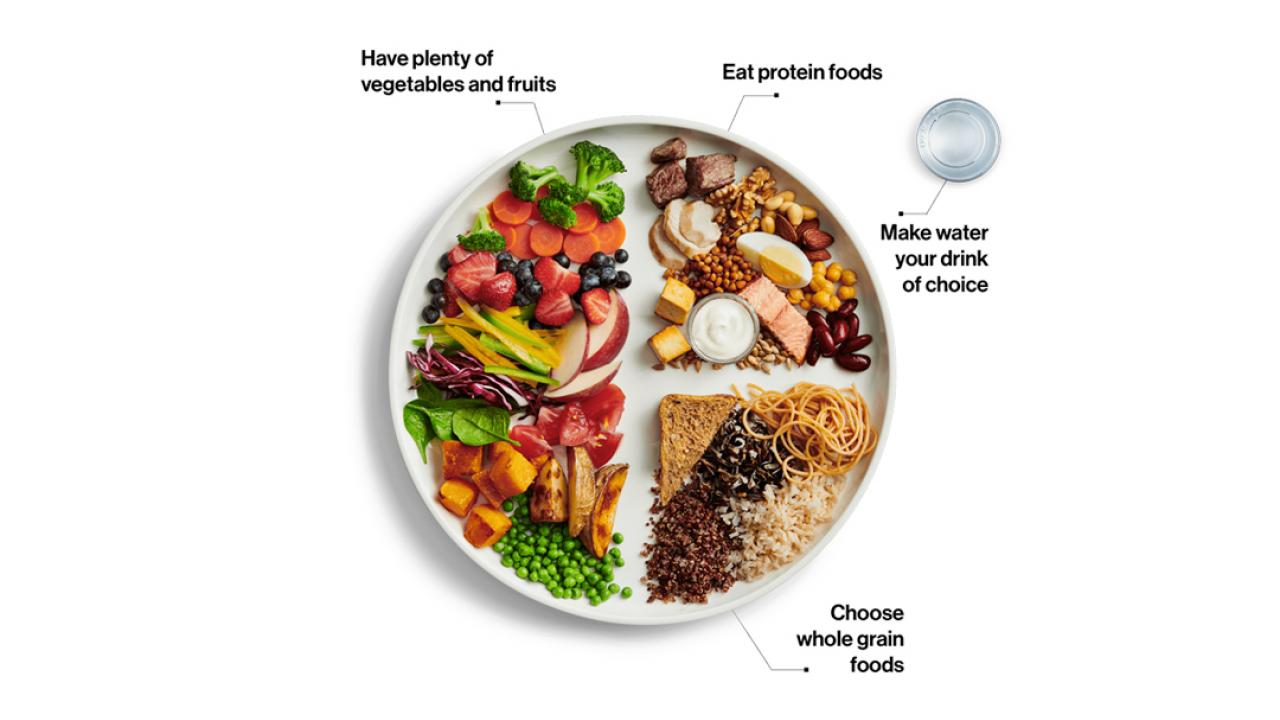 photo of food on a plate