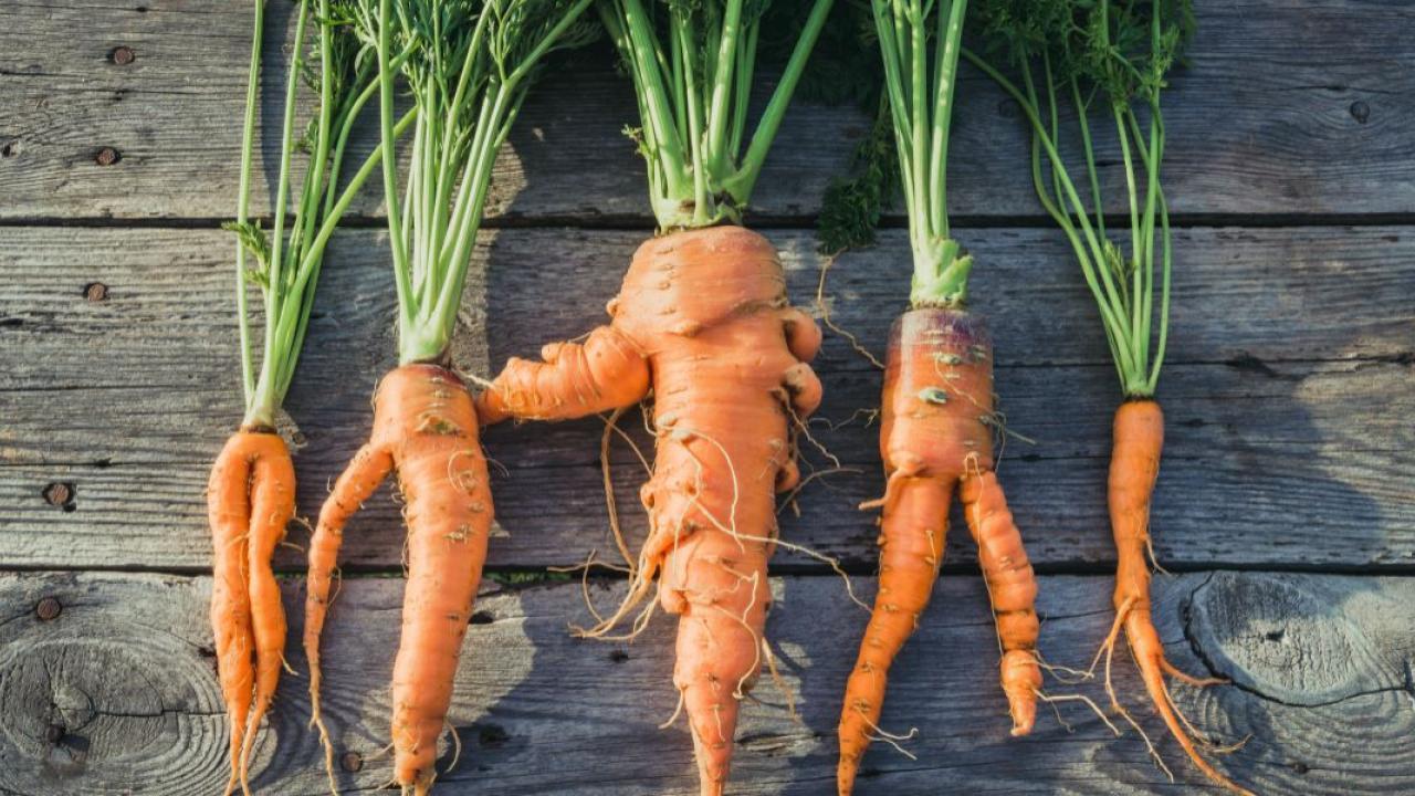 misshapen carrots