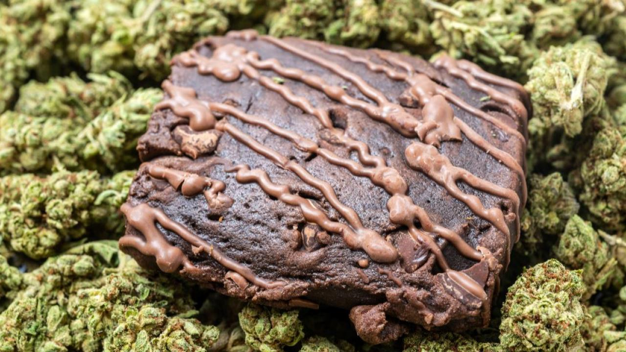 edible marijuana in the form of a brownie