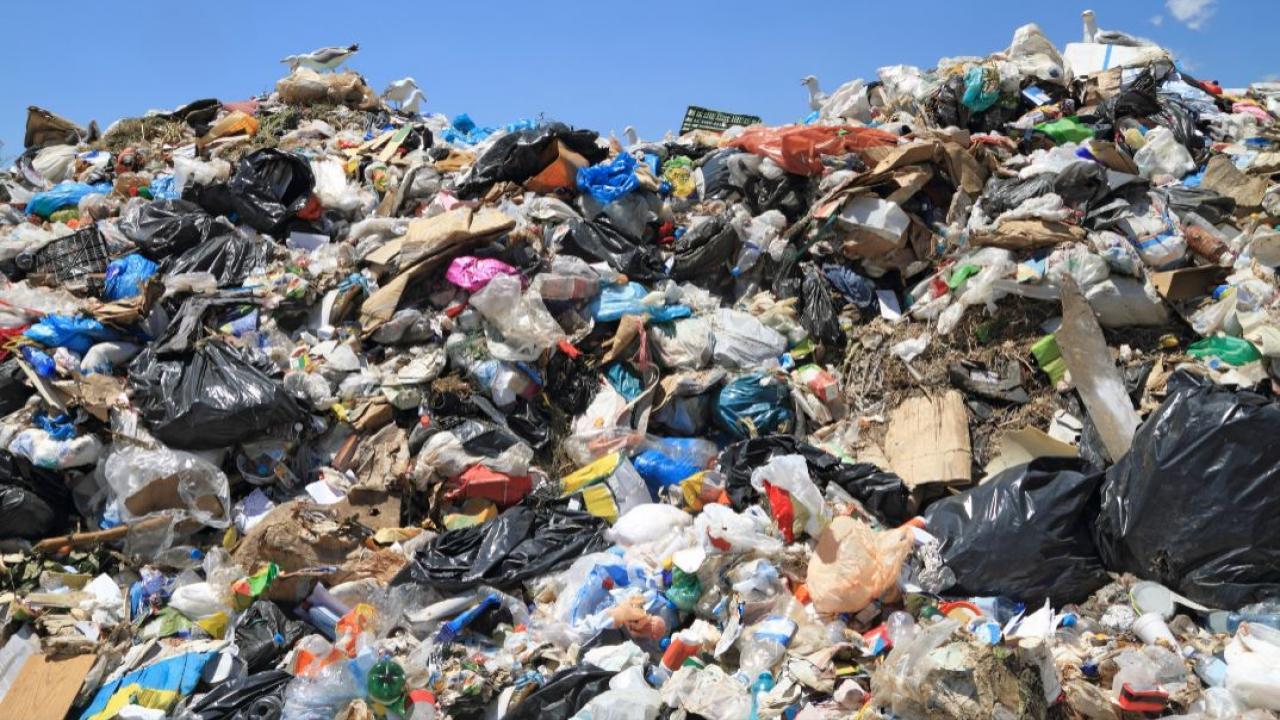 landfill full of garbage