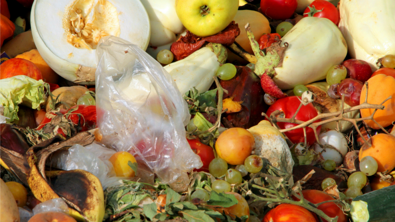 a pile of discarded produce, rotting vegetables and a plastic bag