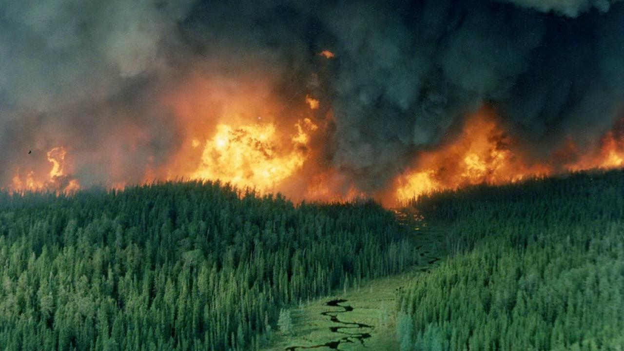 forest fire in Red Lake Ontario
