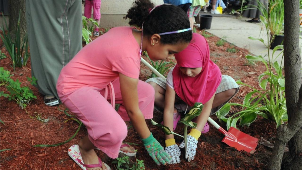 children planting flowers