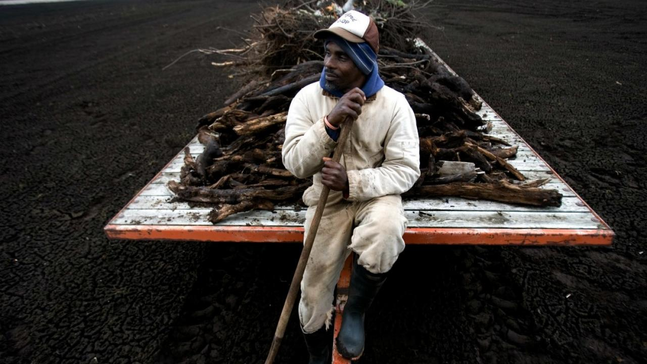 a worker sitting on the back of a truck in a farm field