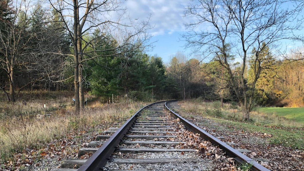 train tracks in a wooded area