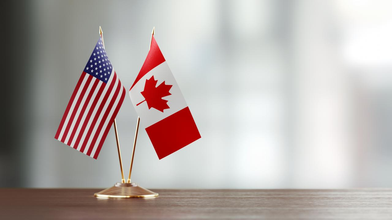 A small Canadian flag and a small American flag standing on a desk.