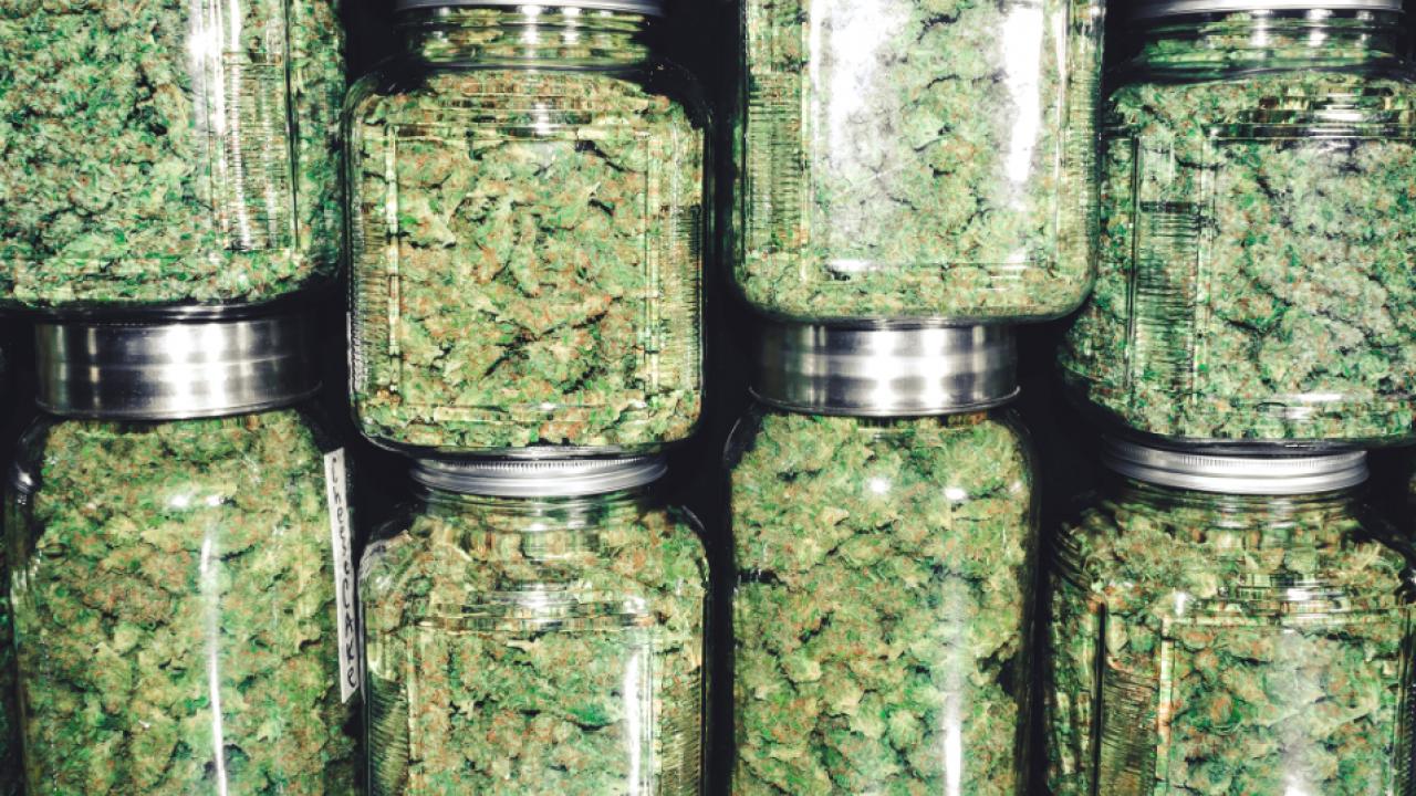 Jars of dried weed buds.