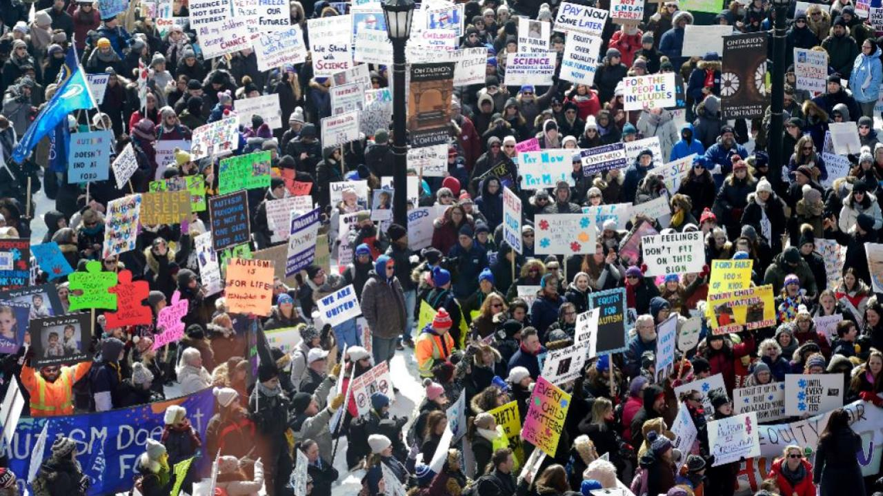 a crowd of demonstrators