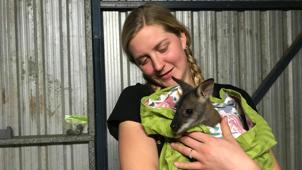 Heidi Bechtold holding a kangaroo in Australia