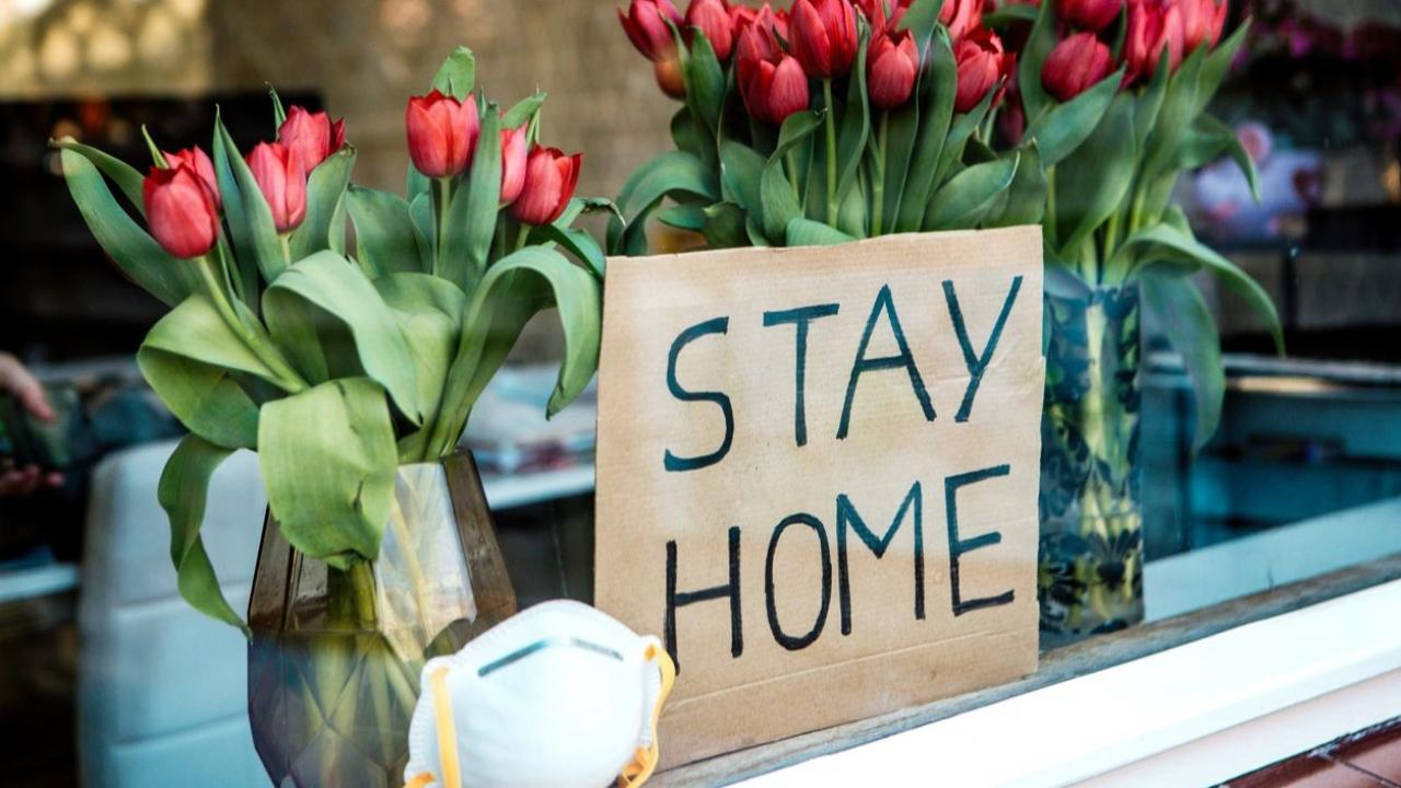 """Carboard sign in the front of a restaurant says """"stay home."""""""