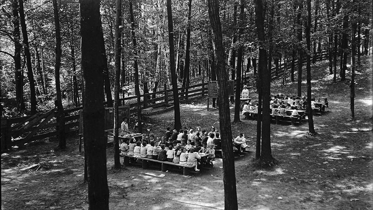 schoolchildren sit at desks in the forest