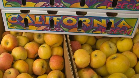crates of California apples
