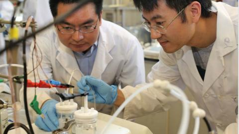 two scientists working on a project in a lab