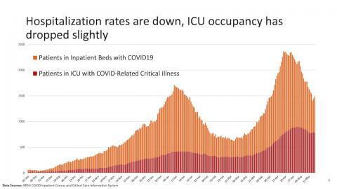 chart showing ICU capacity in Ontario