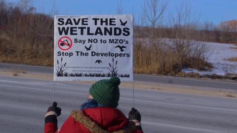 """a woman holds a """"save the wetlands"""" sign"""