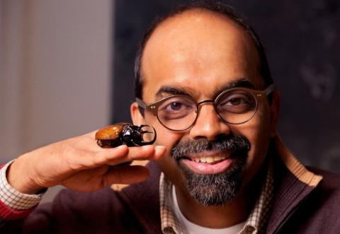 Man posing with a large beetle on his hand.