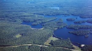 overhead shot of lakes and forests from the article The Ontario government isn't built to meet its own environmental goals