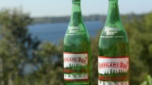 two bottles of Temagami Dry from the article Why this Ontario town is taking a pop at ginger ale