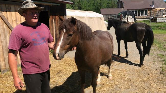 a man with three horses