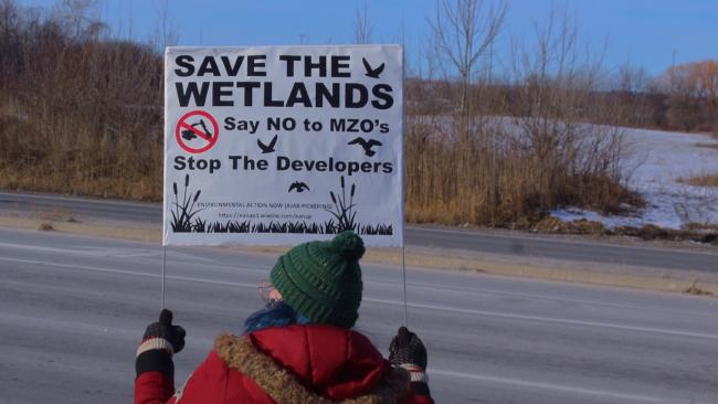 "a woman holds a ""save the wetlands"" sign"