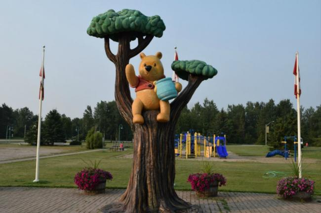 Winnie the Pooh in a tree