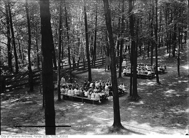 schoolchildren sit at desks in the forest
